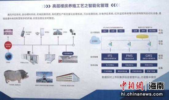 图为项目高层楼房养殖工艺智能化管理示意图。 尹海明 摄